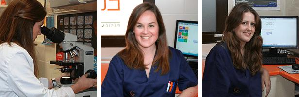 Equipo Clínica Veterinaria El Quiñón